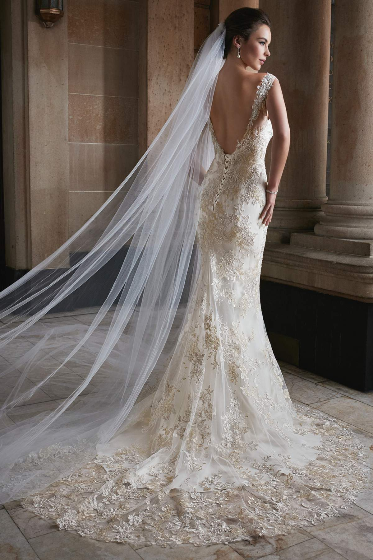 8aa9861d214 ... Tolli Style Y21736 Electra by Sophia Tolli. Previous. Y21736 Day4 01  2149